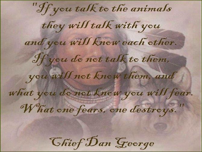 Wenn du mit den Tieren sprichst, lernst du sie kennen. Wenn du nicht mit ihnen sprichst, lernst du sie nicht kennen. Was du nicht kennst, davor fürchtest du dich. Was du fürchtest zerstörst du!?