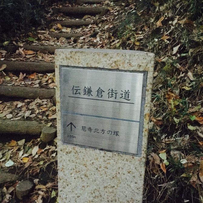 Old Kamakura Road Tokyo Kokubunji historical walking tourist spot TAMA Tourism Promotion - Visit Tama 伝鎌倉街道 東京都国分寺市 歴史 散策 観光スポット 多摩観光振興会
