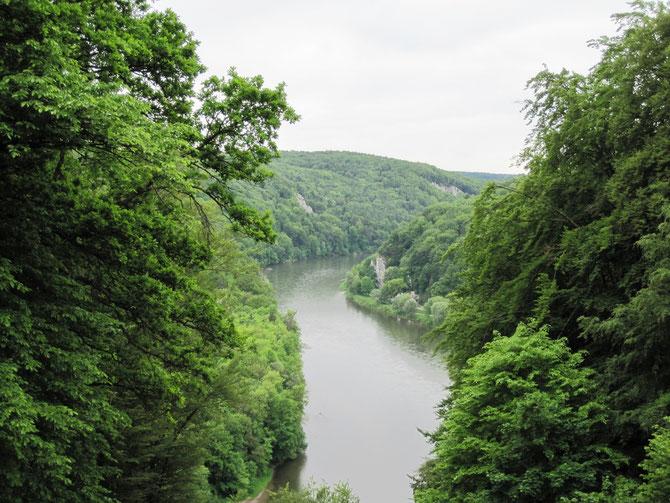 Blick vom Michelsberg auf die Donau, Kelheim
