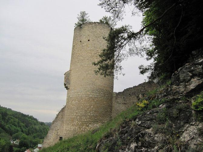 Burg Loch, Nittendorf-Eichhofen
