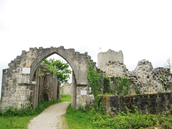 Burg Kallmünz