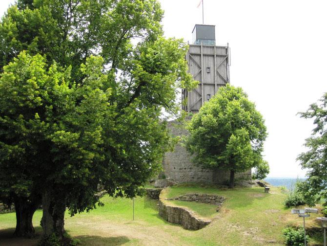 Burg Brennberg, Unterbrennberg