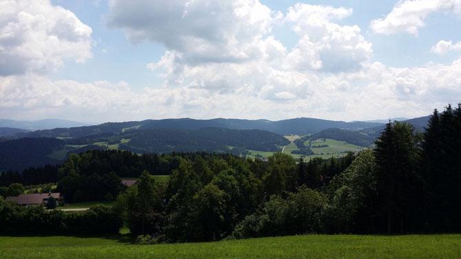 Landschaft des Bayerischen Waldes