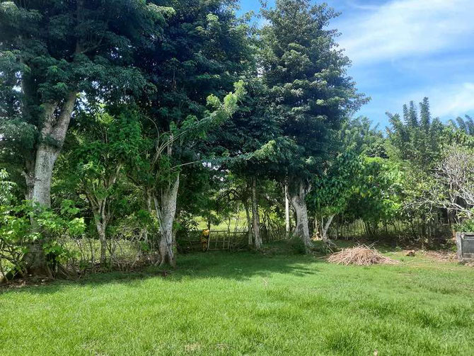 Bukit land for sale.