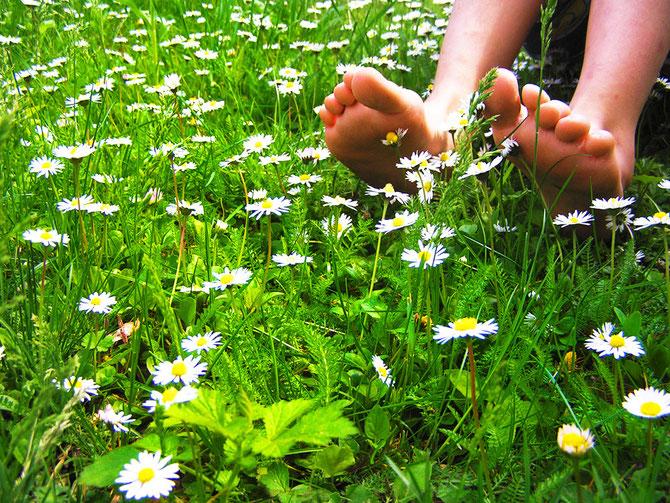 Gehen, wie barfuß auf einer Sommerwiese. Foto: ©   Jutta Rotter  / PIXELIO.de