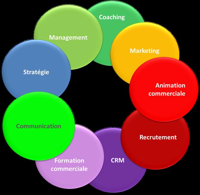 Les domaines d'expertises de François CHAPPERON, en management et organisation commerciale pour développer votre entreprise, PME et TPE - FC3