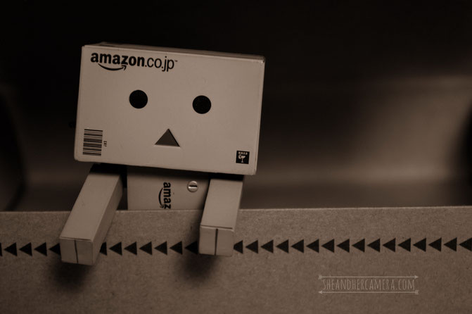 Danbo in a box