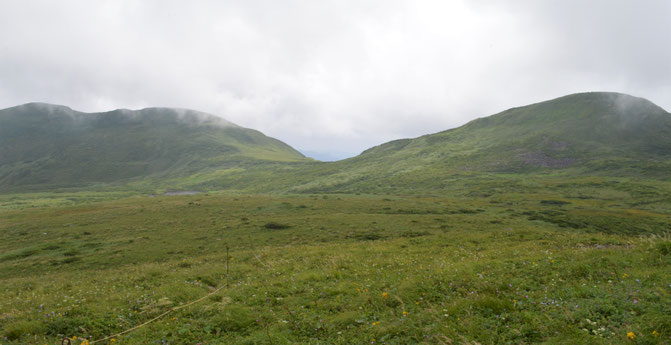東焼石岳に向かう登山道より。左が横岳、右が焼石岳。横岳は大きく見えるんだよなあ。
