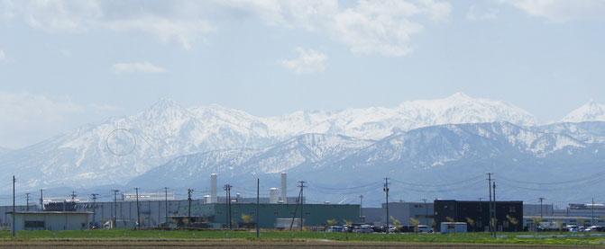 今日の当施設周辺から望む妙高山。躍動感あふれる「跳ね馬」が春の訪れを告げています(画像をクリックして拡大)