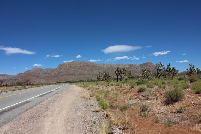 Weltreise USA Amerika Westküste Road trip Nevada Grand Canyon Arizona Las Vegas Reiseblog Natur