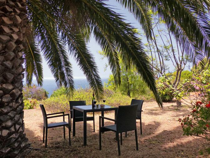 Palmen, Meerblick, Haus mit Klimaanlage und in bester Lage