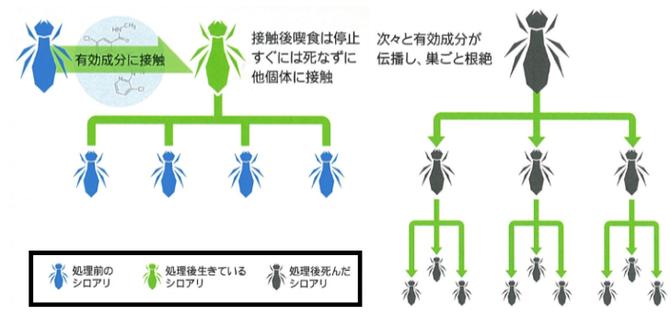 アルトリセット200SCがシロアリの巣にどのように効くのかを説明した図