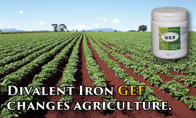 Divalent Iron GEF chamges agriculture.