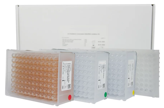 nucleic acid purification kits with magnetic sorbents