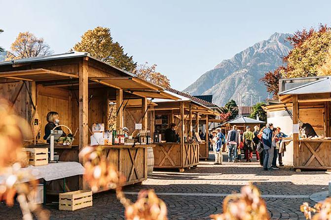 Schnalser Schaf – Spezialitätenwochen im Zuge der Transhumanz - La pecora della Val Senales - Gourmet Südtirol