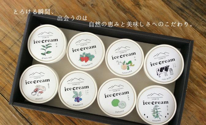 久住高原プレミアムアイスクリーム 黒胡麻ソフトクリーム、落花生、いちご、ミルク、ブルーベリー、かぼす、岳梅、抹茶