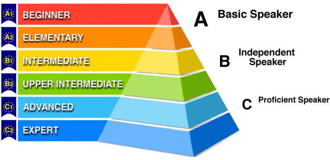 a assessment guidelines b qualifications framework c competency standards