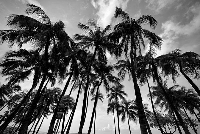 Shirakawago, Gifu, JAPAN