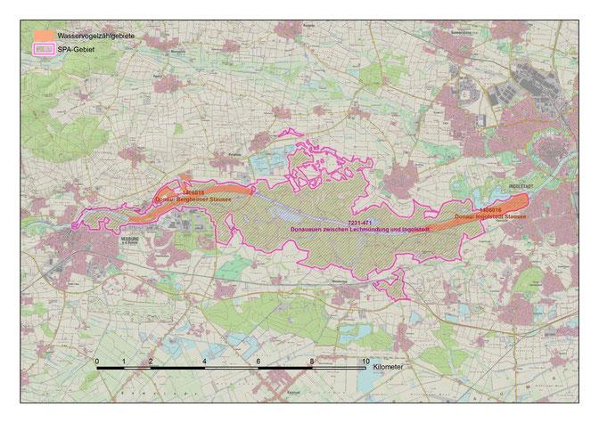Abgrenzung des Europäischen Vogelschutzgebiet (Quelle: LfU Bayern)
