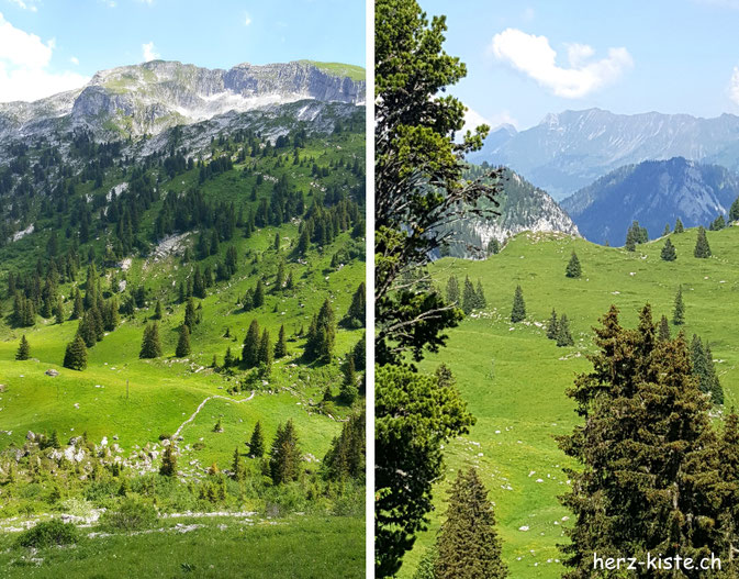 Diemtigtal im Berner Oberland