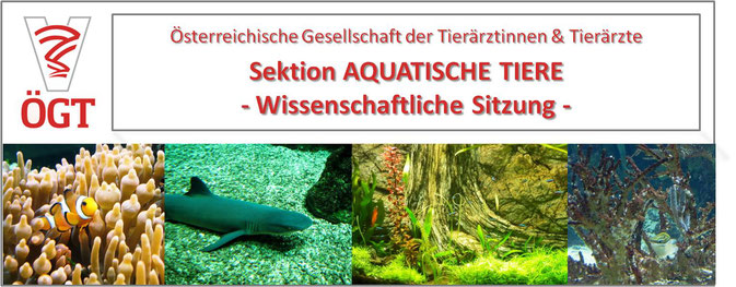 ÖGT / Österreichische Gesellschaft für Tierärztinnen & Tierärzte: Sektion Aquatische Tiere - Wissenschaftliche Sitzung 2018; Koi, Goldfisch