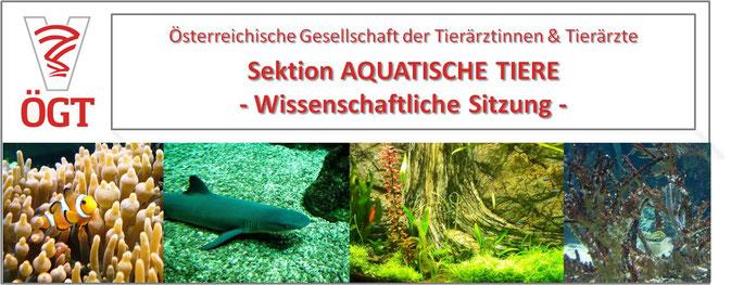 ÖGT Fortbildung Tierarzt; Sektion Aquatische Tiere - Wissenschaftliche Sitzung 2018; Koi, Goldfisch, Fisch, Erkrankungen