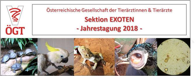 ÖGT Fortbildung Tierarzt; Sektion Exoten; Jahrestagung 2018; Vogel, Papagei, Reptil, Schildkröte, Schlange, Echse
