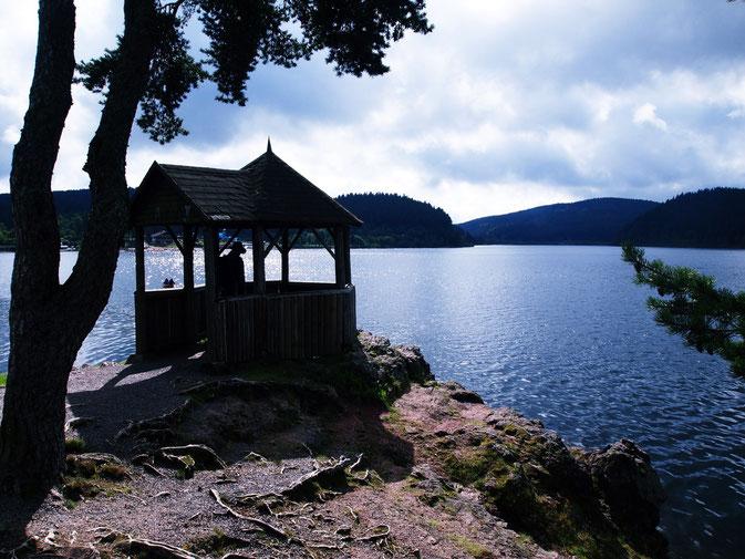 Unser Kurzurlaub im Schwarzwald: Der Schluchsee