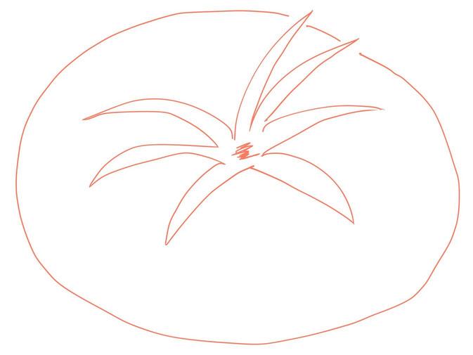 アイコン 「トマト」 (作: 塚原 美樹) ~ 最後にヘタにおへそを描く