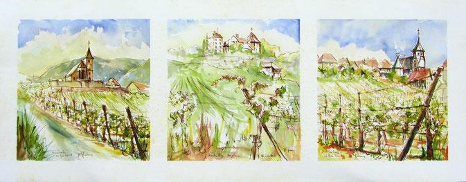 Hunawihr, Reichenberg-Bergheim, Zellenberg, grand cru Rosacier,Centre de réintroduction des cigognes et des loutres en Alsace,serre à papillons.  village alsace, aquarelle Alsace, Alsace