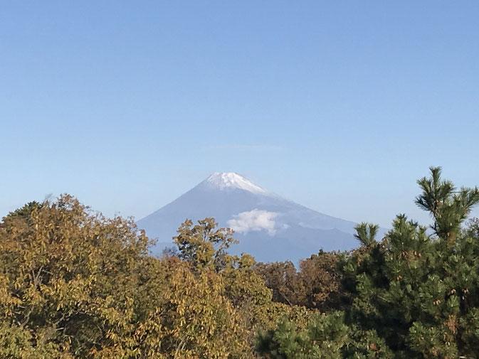 ホテル前に広がる富士山の絶景