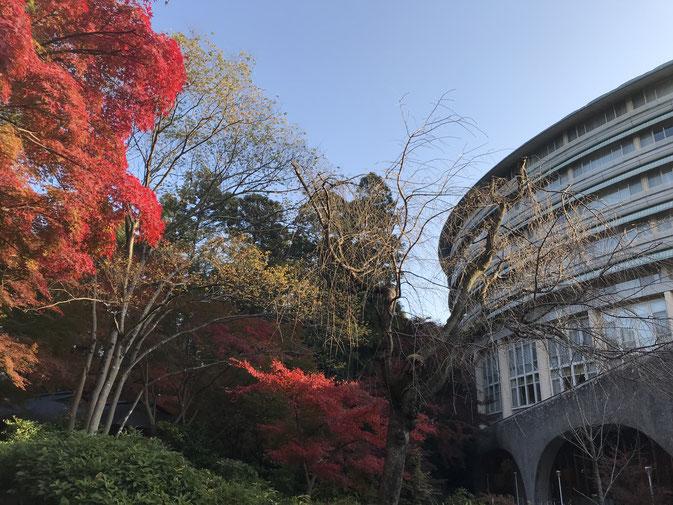 ザ・プリンス 京都宝ヶ池、オートグラフコレクション