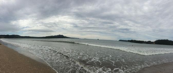Les plages de Whitianga