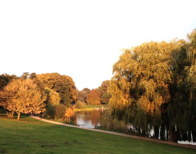 Stadtpark aux couleurs de l'automne
