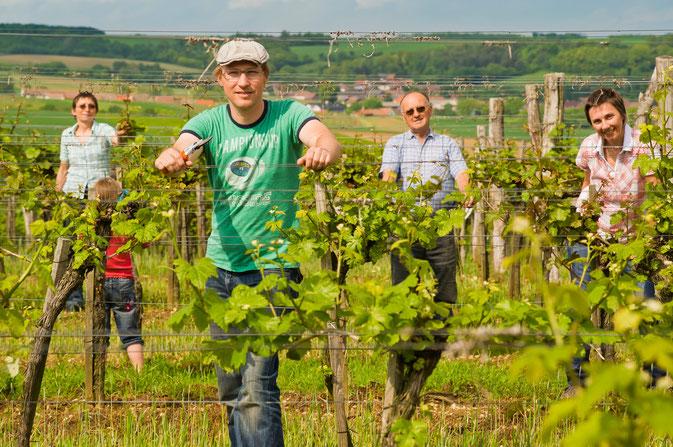 Familie Uibel im Weingarten Riede auf der Gans - 339m Seehöhe