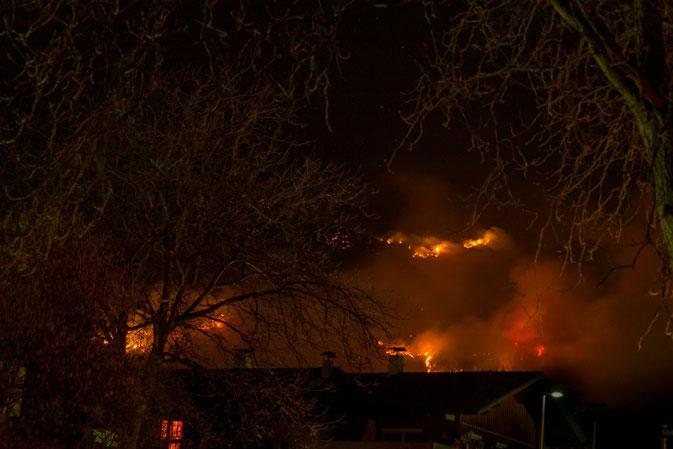 Unheimlich - Der Waldbrand oberhalb von Absam/ 20. 03. 2014