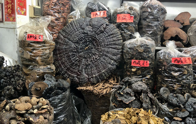 Herbal Market in China