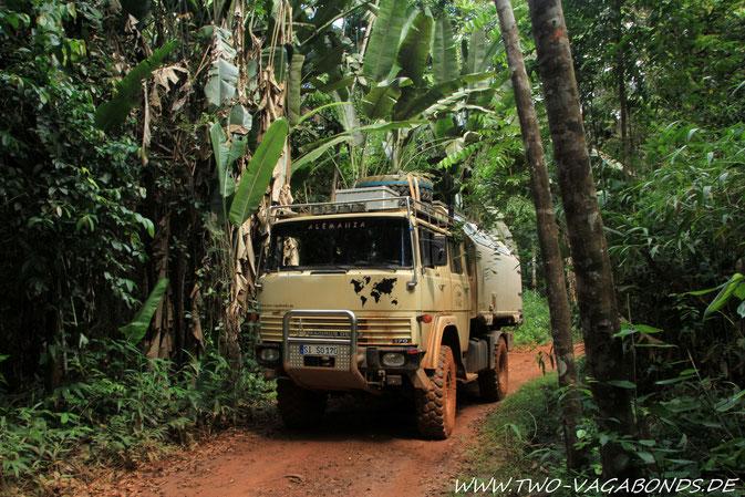 DURCH DAS DICHT AMAZONIEN