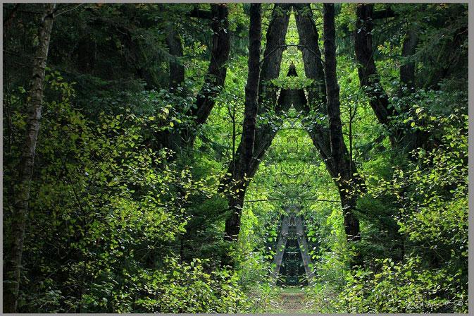 Bild 05: bitte geben Sie dem Bild einen Titel. Ich würde mich freuen!