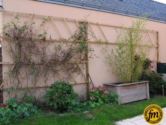 TREILLAGE pour plantes grimpantes - Site de Frédéric Mainguet