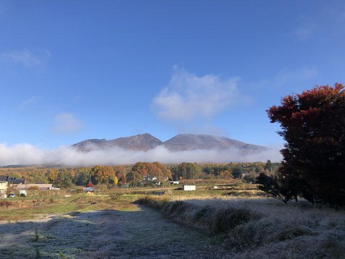 11月5日の浅間山と裾野の紅葉、手前の畑の霜。