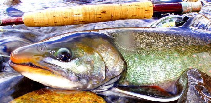 Flyfishing Float Trip Karluk River, Alaska, Kodiak