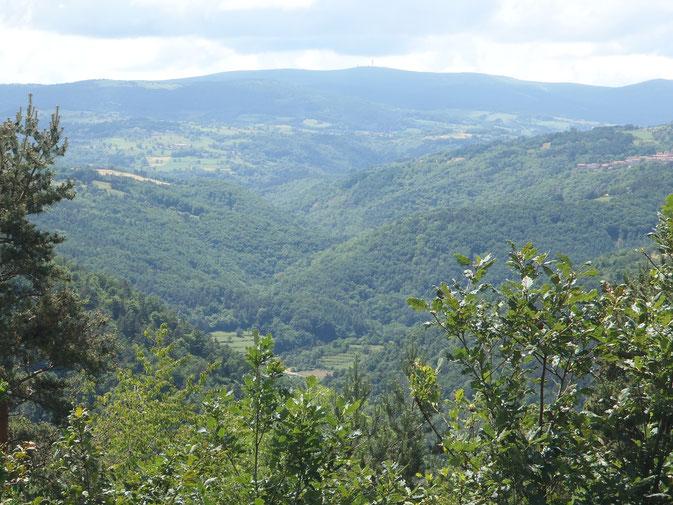 La vallée du Lignon, que surplombe Saint-Georges en Couzan (à droite) - En arrière-plan, Pierre-sur-haute et ses 1634m, point culminant des Monts du Forez