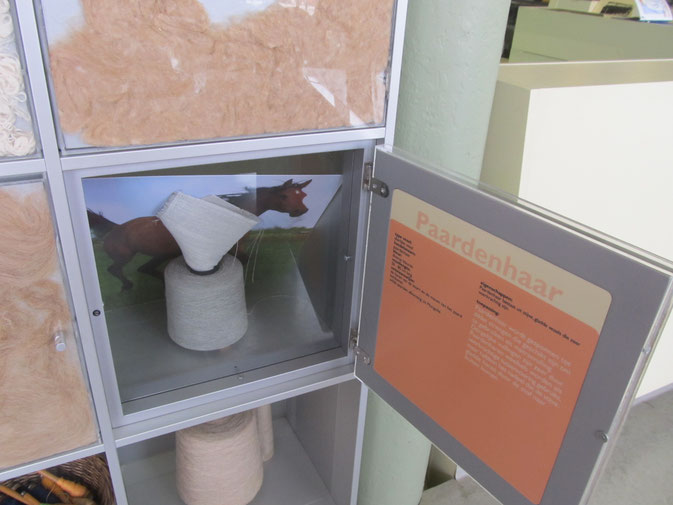 MIA museum