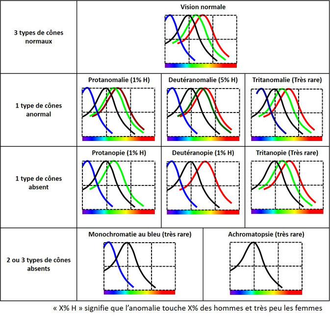 Noms des différentes formes de daltonisme : protanopie, deutéranopie, tritanopie.