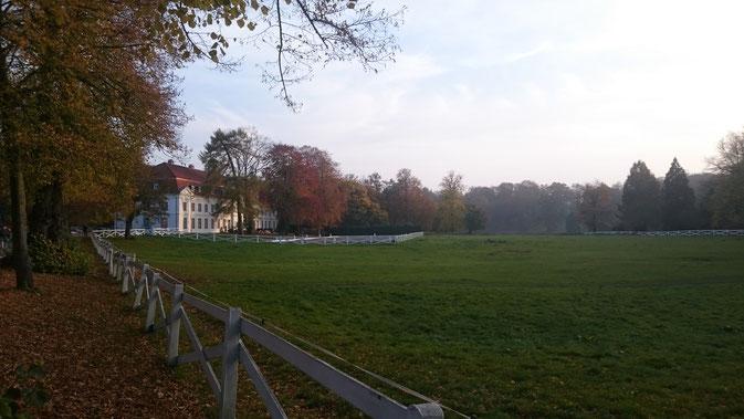 Herbst auf Gut Panker / © Dörte Schmidt