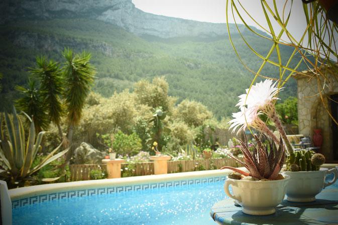 Eldorado Denia Ferienwohnungen bei Kerstin Mais