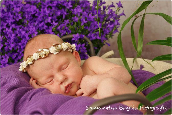 Neugeborenen Shooting Samantha Baylis Fotografie Himmelpforten