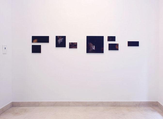 Unbekanntes bild. Oil on linen. 45 x 245 cm. 2013