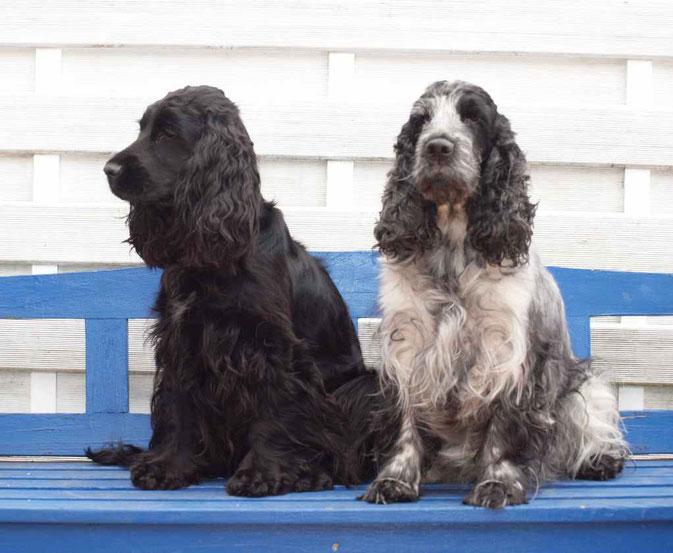 Lucy und Maggy